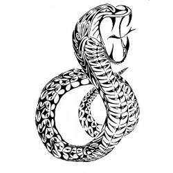 """стикер за кола """"змия Бонанле"""""""