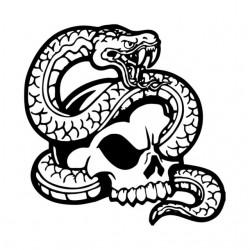 """стикер за кола """"змия Ефемена"""""""