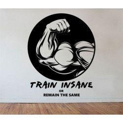 Train Insane -60/90 см
